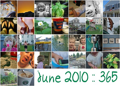 June 2010 :: 365