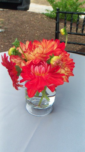 Floral Design by Leslie Moore