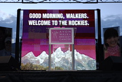 20100626_Avon Walk_0218