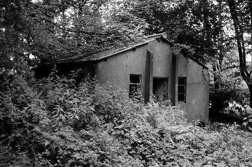 Abandoned Airbase