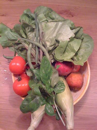 Elsjes picture of Amelis'hof CSA vegetables week 35, 2010