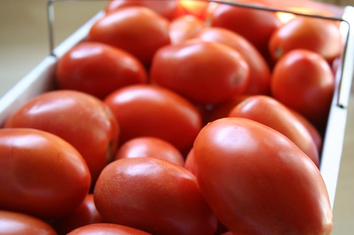 8-quarts of plum tomatoes from the farmers market for Fresh Chunky Tomato Sauce