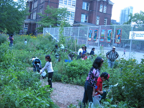 Community garden drop-ins with families