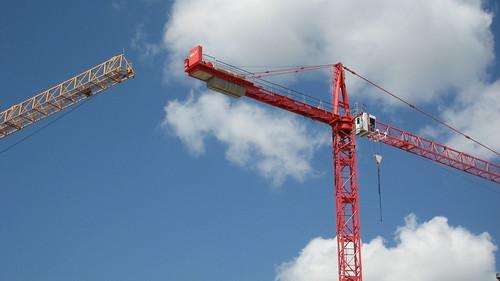 Cranes! (for June 25, 2010) [99/365]