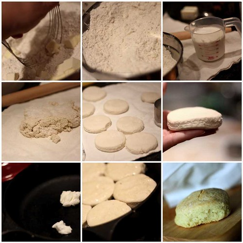 biscuit mosaic2