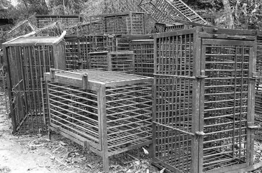 EMPTY CRUSH CAGES FROM BILE FARMS AT ANIMALS ASIA FOUNDATION CHENGDU