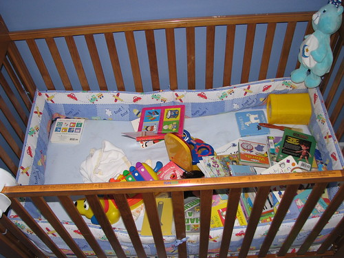 Crib or Toy Box?