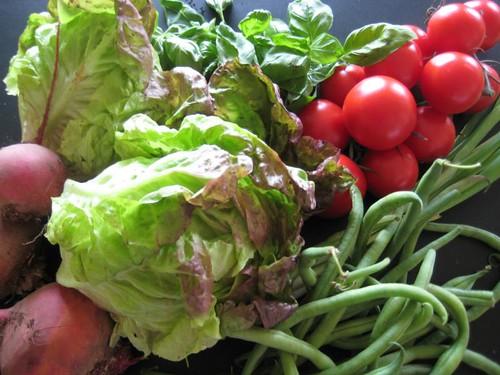 Amelishof CSA vegetables week 38, 2010