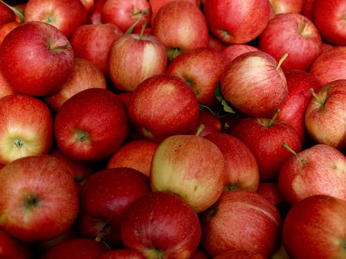 25: apples.