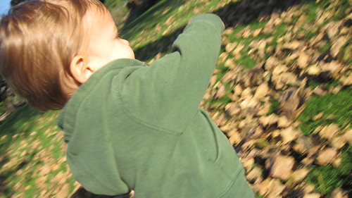 Paul in the leaves
