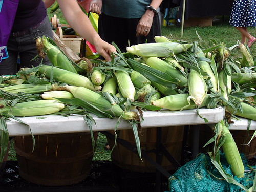 Bettancourt Farm corn