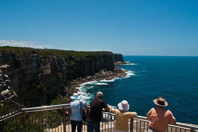 The sea cliffs north of North Head, Sydney