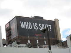 Who Is Salt