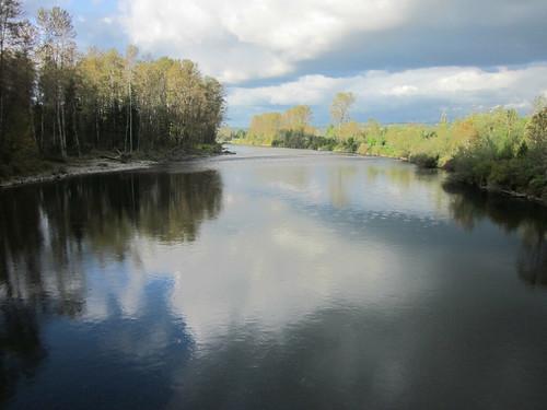 Tolt River - John MacDonald Park