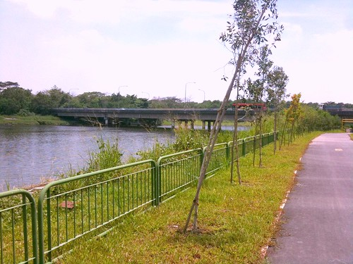 Cycling on a Lazy Saturday Afternoon - Punggol PCN (6/6)