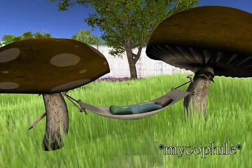 SL House & Garden Hunt - *mycophile*