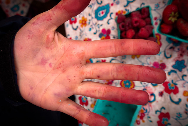 Berry-Stained Hands