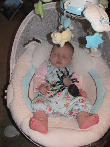 All babies sleep with plastic spiders,