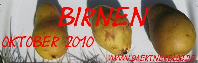 Garten-Koch-Event Oktober 2010: Birnen  [31. Oktober 2010]