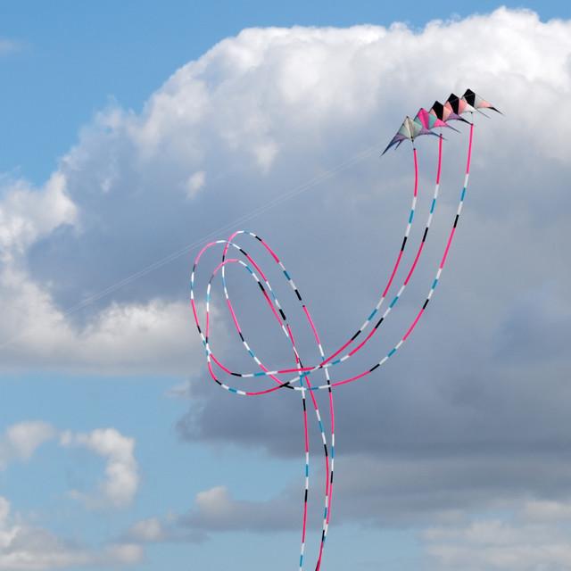 Eggerdon Hill Kite Festival 2010_12