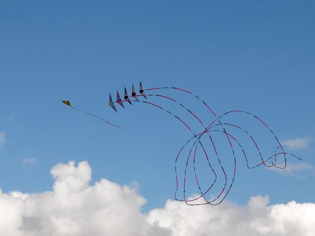 Eggerdon Hill Kite Festival 2010_6