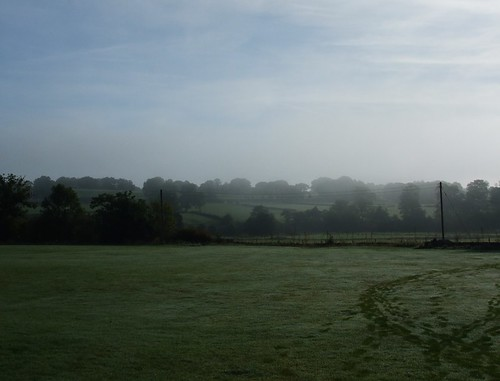 a misty morning with footprints
