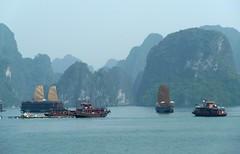 Mucho tráfico en la bahía de Halong