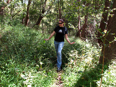Rachel Carson Trails