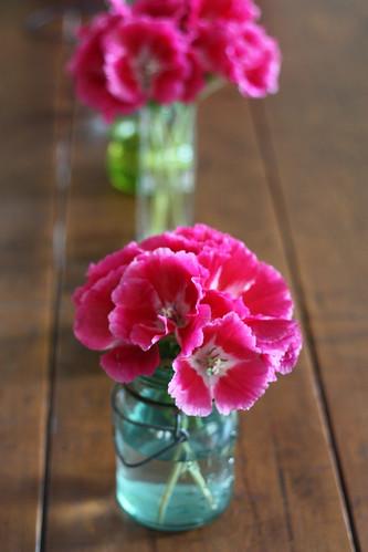 Last flowers