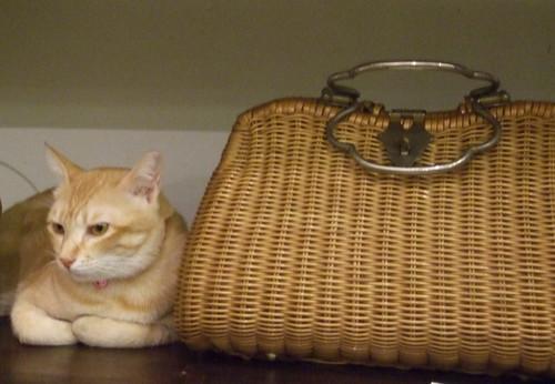Estee&wicker handbag 2