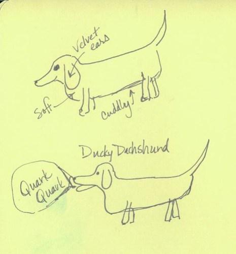 dachshund 1
