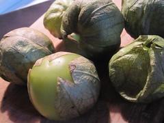 Tomatillos (03)