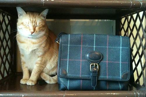 Estee&Burberry handbag