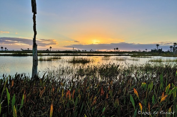 Sunrise at Viera Wetlands