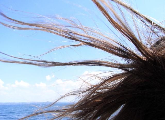 Hairs and lake