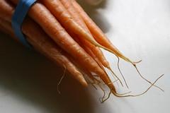carrot tips