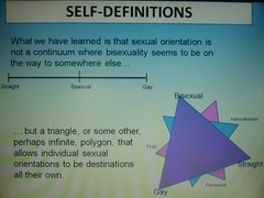 Sexual orientation self-definitions