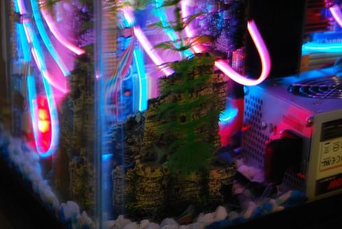 Aquarium_PC34