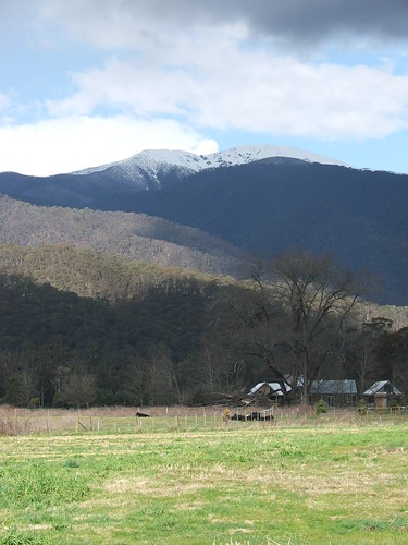 Picture From Harrietville, Victoria