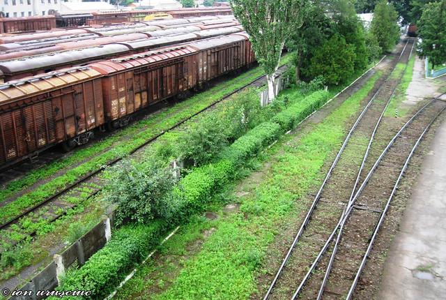Trenuri-BL (6)