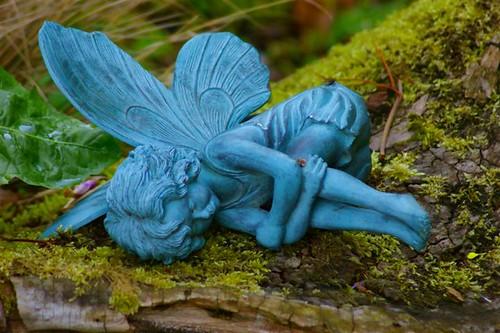 Even fairies dream
