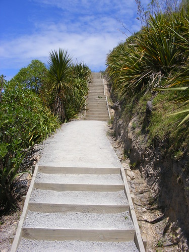 Picture from New Zealand's Mt. Maunganui