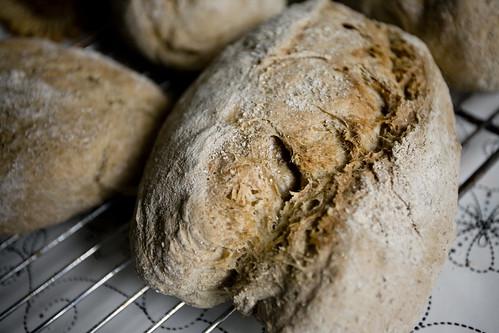 Rye Cider Bread
