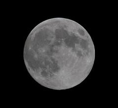 Full Moon August 23, 2010