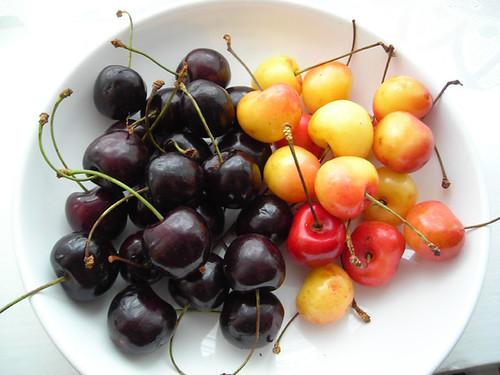 Day 5 - Berries3