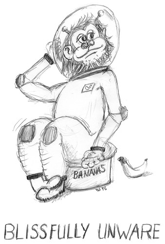 Space Monkey fan art - Blissfully Unaware