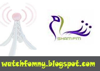 Sham-website