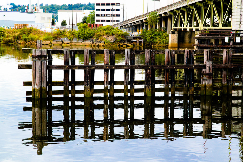 Duwamish reflections