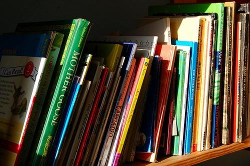 Bookshelf in Morning