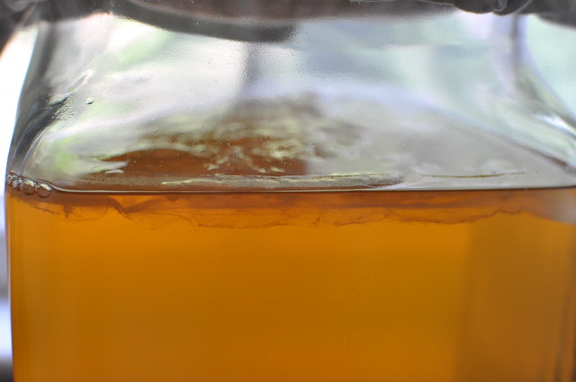 SCOBY side angle